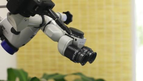 Praxis für Zahngesundheit Leipzig Dr. Jana Schutte I Mikroskop